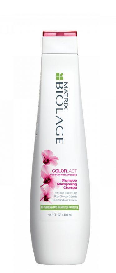 Šampūnas dažytiems plaukams MATRIX BIOLAGE Colorlast Shampoo 250ml-0
